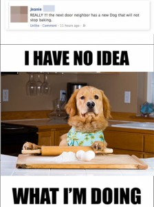 cooking-dog-has-know-idea-what-hes-doing
