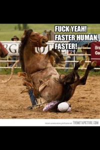 horse riding person
